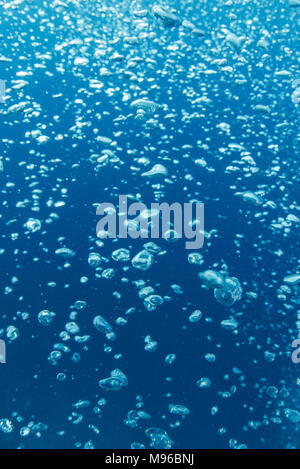 Photo sous-marine de bulles s'élevant de la profondeur à la surface, avec l'eau bleu clair derrière. Parc marin de Raja Ampat, Papouasie occidentale, en Indonésie. Banque D'Images