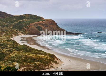 Nouvelle Zélande, île du Sud, Dunedin, Otago Peninsula, Phlébotome Bay Banque D'Images