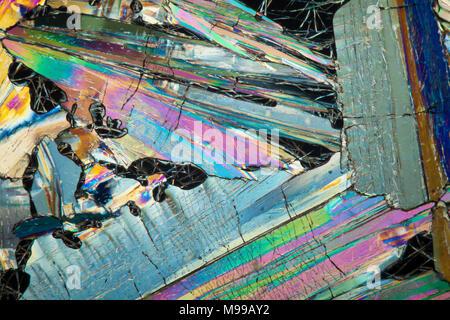 Polarisation croisée à fond clair photomicrographie, acide benzoïque, glisser faire fondre