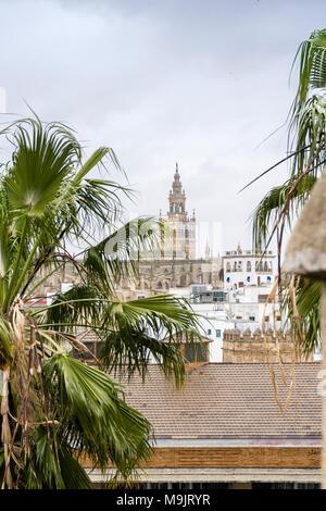Vue sur la vieille ville de Séville, à la Giralda de la Cathédrale de Séville, Séville, Andalousie, Espagne Banque D'Images