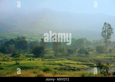 Belle vue sur montagnes Sahyadri dans la saison des pluies, Hadashi, près de Pune, Maharashtra, Inde Banque D'Images