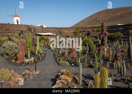 Jardin de cactus conçue par César Manrique à Lanzarote Banque D'Images