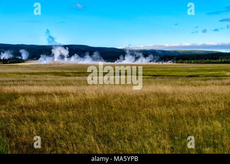 Vaste champ d'herbe avec les geysers et les collines au loin sous ciel bleu.