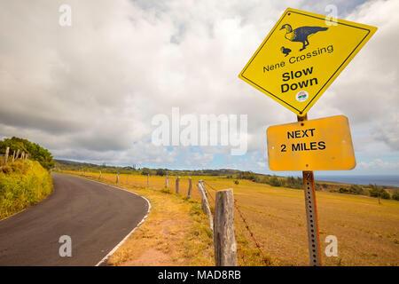 Un signe que les conducteurs d'avertissement Nene Goose (prononcez nay nay), Nesochen sandvicensis, sont trouvés dans ce domaine à l'extrémité est de l'île de Molokai, H Banque D'Images