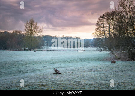 Plus de givre champs dans le Devon Région de beauté naturelle exceptionnelle. Banque D'Images
