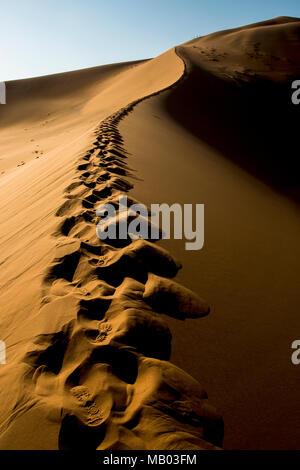 Des traces de pas dans le sable sur Big Daddy Dune Sossusvlei en Namibie. Banque D'Images