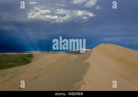 Sunryas au Parc National Gurvansaikhan, désert de Gobi, Mongolie Banque D'Images