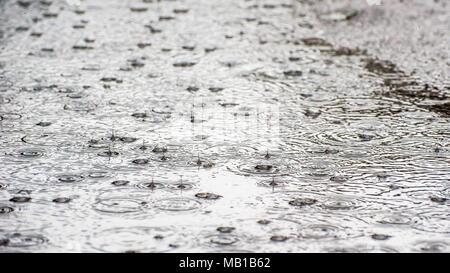Gouttes de pluie bounce & Splash dans les flaques d'eau lors d'une tempête à l'origine de rides Banque D'Images