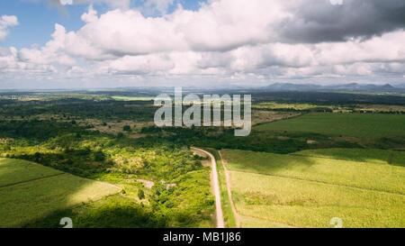 Fiel vert bleu ciel. amd Arbres Banque D'Images