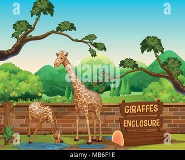 Deux girafes au zoo illustration Banque D'Images