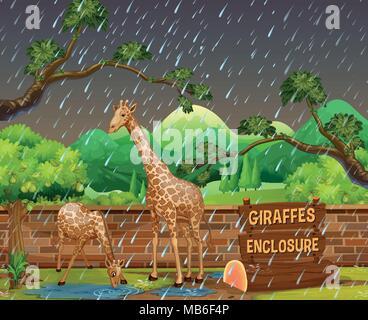Scène du Zoo avec deux girafes sous la pluie illustration Banque D'Images