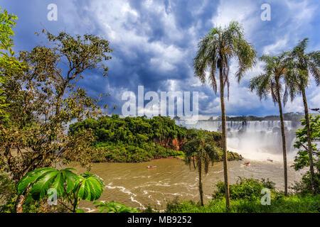Iguazy Falls vue panoramique à partir de la jungle de palmiers et cloud sky, côté Argentin Banque D'Images