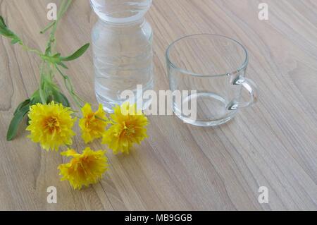 Photo en gros plan d'un verre d'eau vide, bouteille d'eau et de fleurs sur la table en bois naturel. Banque D'Images
