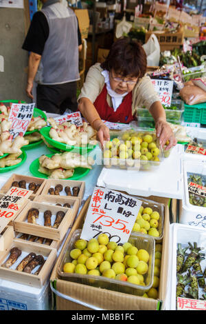 Japon Tokyo Tsukiji Fish Market shopping caractères hiragana kanji pour la vente des produits frais d'affichage racine de gingembre femme asiatique du vendeur Banque D'Images