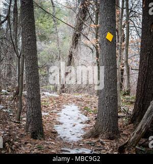 ... Marques et signes trouvés lors d une randonnée au début du printemps en Nouvelle  Angleterre c5cbe2269f3