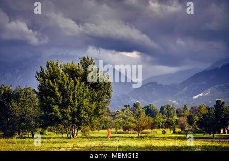 Femme en robe rouge à pied de grand arbre dans le parc avec cloudy mountains à Almaty, Kazakhstan Banque D'Images