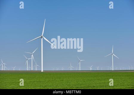 Ferme éolienne énergie renouvelable dans le champ vert frais contre ciel bleu clair Banque D'Images