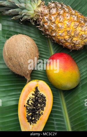 Arrière-plan de la nature tropicale ANANAS COCO Papaye Mangue mûre sur grande feuille de palmier vert. Mode de vie Alimentation saine vitamines été Voyage Vacances Concep Banque D'Images