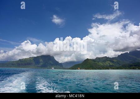 Bateau de croisière mouillant au large de la côte de Mo'orea, l'une des îles du Vent et Îles de la société, Polynésie Française, Pacifique Sud. Banque D'Images