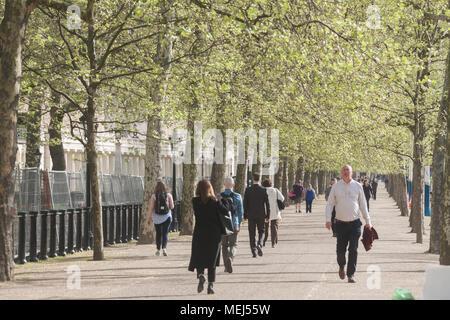 London UK. 23 avril 2018. Météo France: les navetteurs matin marche dans le soleil du printemps sur le Mall sur une agréable matinée ensoleillée que Londres se réveille à des températures plus froides Crédit: amer ghazzal/Alamy Live News