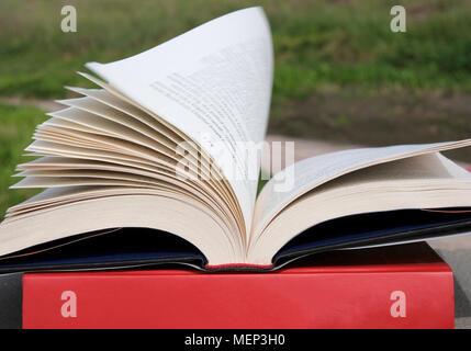 Livre ouvert avec les pages de vol Banque D'Images