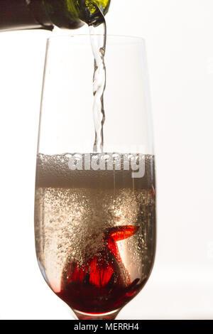 Verser le vin blanc mousseux sur Hibiscus flower in glass Banque D'Images