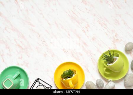 Mise à plat de couleur créative en 24 avec bol vert, pierres et plantes grasses contexte Banque D'Images