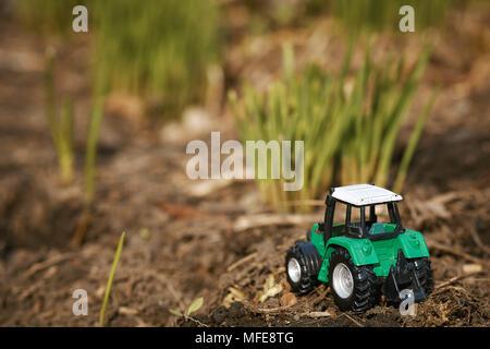Tracteur jouet sur fond d'herbe verte . Semis de printemps, travaux publics Banque D'Images