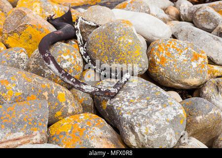 Rochers arrondis couverts de mousse jaune sur un vent a balayé le littoral africain robuste Banque D'Images