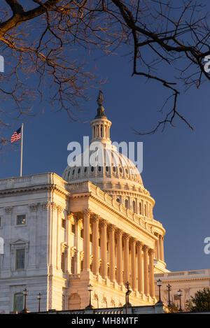 United States Capitol Building à l'hiver pendant le coucher du soleil. Ciel bleu clair.