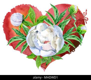 Coeur rouge aquarelle avec pivoines blanches, peint à la main Banque D'Images