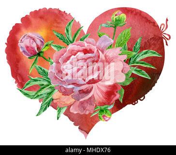 Coeur rouge aquarelle avec pivoines rose, peint à la main Banque D'Images