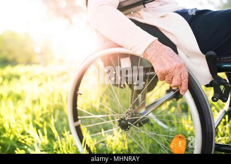 Femme âgée en fauteuil roulant dans la nature au printemps. Banque D'Images