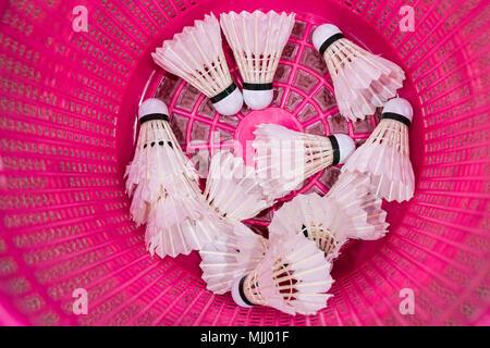 Badminton birdies blanc en plastique rose vif Banque D'Images