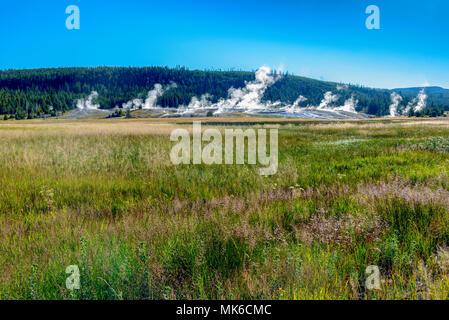 Les prairies avec de l'herbe bien verte et des geysers en éruption en arrière-plan sous ciel bleu.