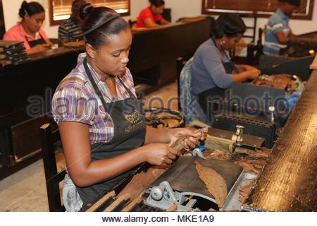 Rouleau de travailleurs et appuyez sur cigares à l'LaFlor Dominicana fabrique de cigares de la République dominicaine. Banque D'Images