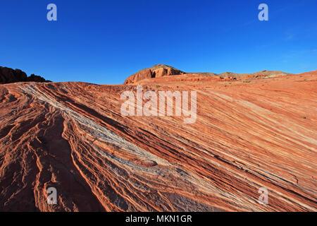 Sur les roches à rayures en Rose Hill Crazy Canyon, près de l'onde de feu au coucher du soleil, la Vallée de Feu State Park, États-Unis Banque D'Images