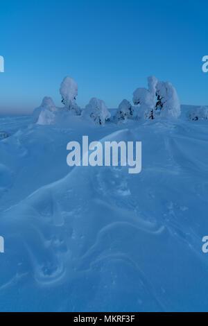 Beau paysage d'hiver après le coucher du soleil, c'était vraiment froid dehors, quelque part à -30 degrés. Les formes de neige fait par le vent ont été rendant le tout Banque D'Images