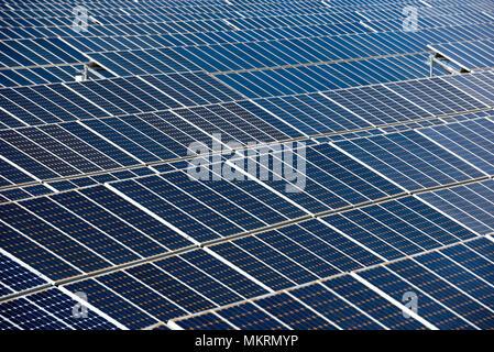 Gros plan d'une rangée de panneaux solaires dans un champ ouvert avec de multiples panneaux d'énergie solaire, Calasparra, Murcia, Espagne Banque D'Images