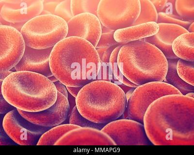 Les globules rouges transportent l'oxygène vers tous les tissus de l'organisme, érythrocytes background