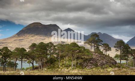 Pins calédoniens au-dessus avec le Loch Torridon Beinn Aligin au-delà, Ben Damh Estate, Wester Ross, Scotland, UK Banque D'Images
