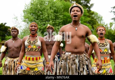 Les Lions du Zululand (un mélange culturel de musiciens et danseurs de l'Afrique du Sud, la diffusion de la culture zoulou; www.lionsofzululand.org.uk) pendant l'exécution de t