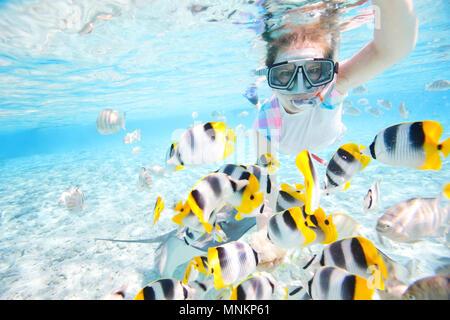 Femme de la plongée libre dans les eaux tropicales claire parmi les poissons colorés Banque D'Images