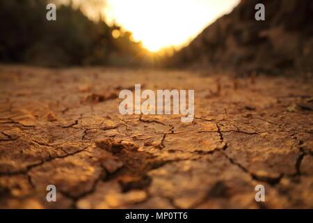 Le séchage de l'image du sol fissuré dans le coucher de soleil. Banque D'Images