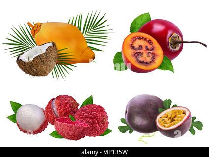 Collection de fruits exotiques isolé sur fond blanc Banque D'Images