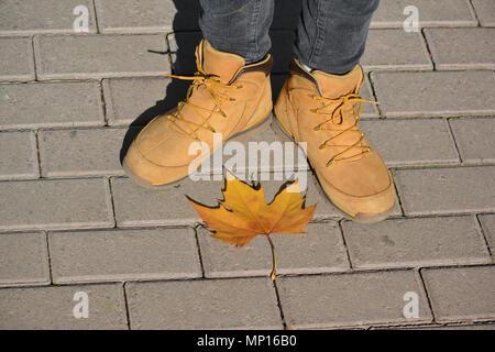 Pieds de la jeune fille à l'automne chaussures sur trottoir avec une feuille d'érable Jaune automne