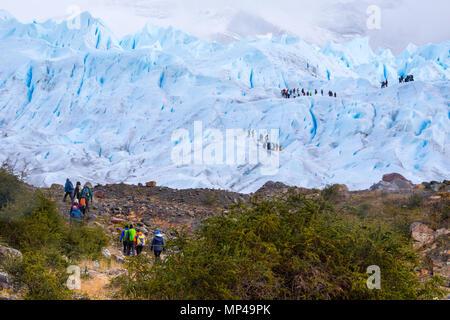 Trekking sur le glacier Perito Moreno, Parque Nacional Los Glaciares, Argentine Banque D'Images