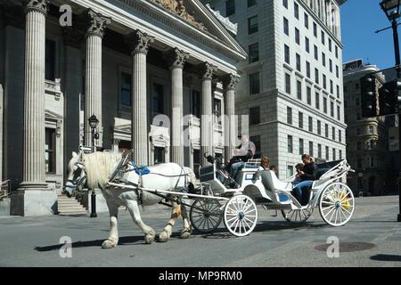 Montréal, Canada, 21 Mai,2018.à cheval sur la rue Saint-Jacques, dans le Vieux Montréal.Credit:Mario Beauregard/Alamy Live News Banque D'Images