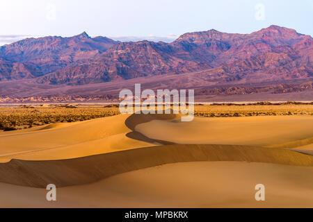 Les dunes de sable au coucher du soleil - Coucher de soleil sur les dunes de sable plat Mesquite en courbes, les étirements à la base d'Amargosa robuste gamme. Death Valley National Park, CA, USA