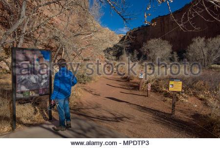 Jeune homme portant veste bleue lecture signeront à l'Hickman Bridge trailhead dans le parc national de Capitol Reef, Wayne County, Utah, USA Banque D'Images